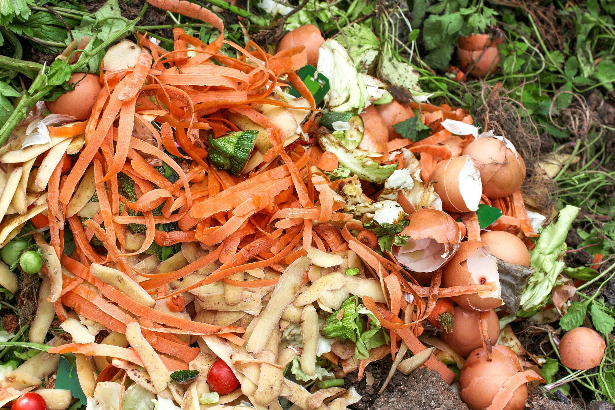 Déchets de cuisine compostables