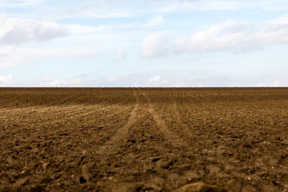 Tous les champs se ressemblement... Alors, quel distingo pour le bio ?