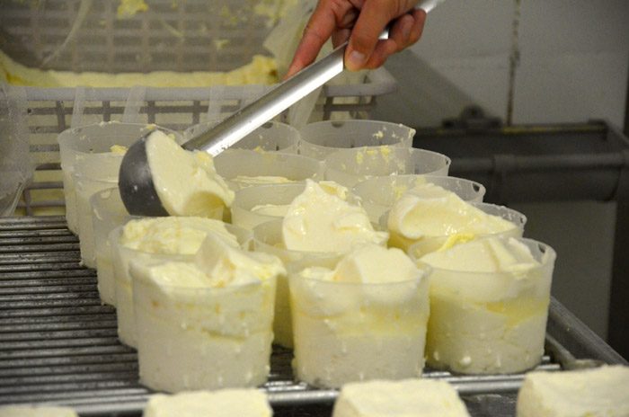 Trois autres personnes travaillent avec Philippe. Il faut les fabriquer les 1200 yaourts chaque jour !