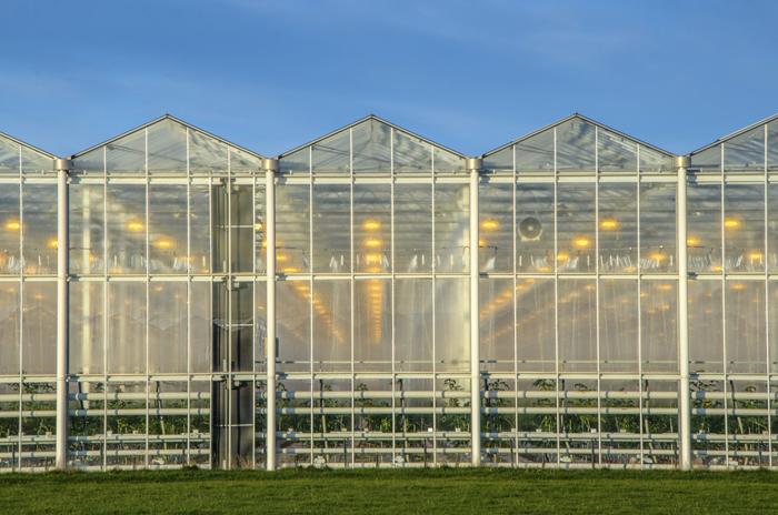 L'investissement en hydroponie est particulièrement lourd, de l'ordre du million d'euros sur une dizaine d'années pour une surface de production de l'ordre de 2000 m².