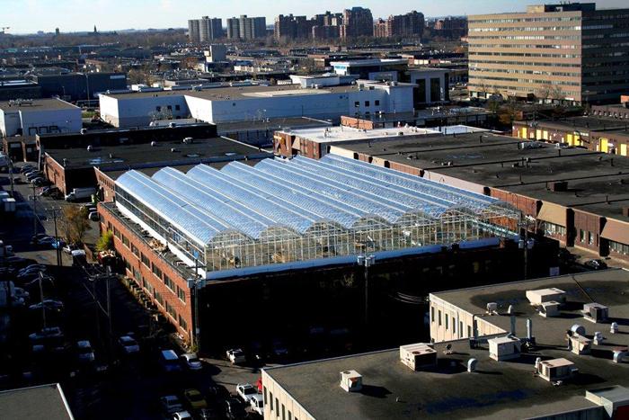 A la Lufa farm de Montréal, on cultive en hydroponie une incroyable diversité d'espèces sur les toits pour nourrir les habitants de la ville. http://lufa.com/fr/corporate.html