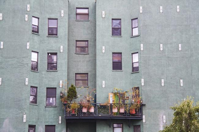 Peut-on cultiver sur tous les balcons ? Pas forcément.