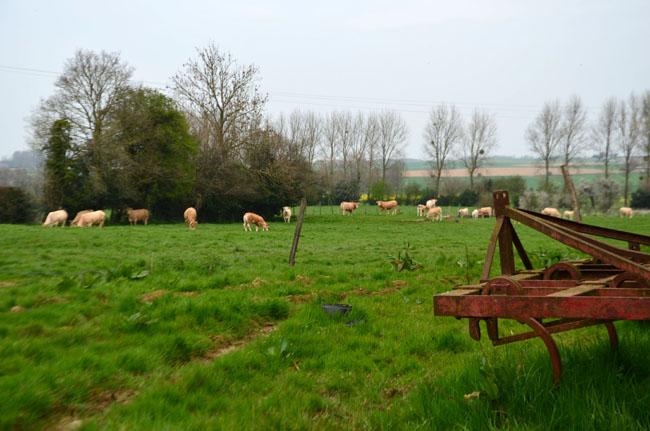 Le terrain de jeux des blondes d'Aquitaine.