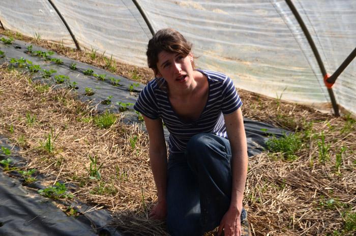 Amélie, agricultrice en herbe, se lance dans la culture des fraises.