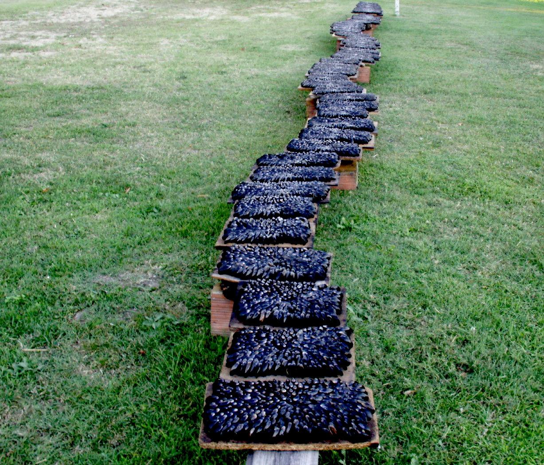 l 39 clade de moules sculpture barbecue oui le magazine de la ruche qui dit oui. Black Bedroom Furniture Sets. Home Design Ideas