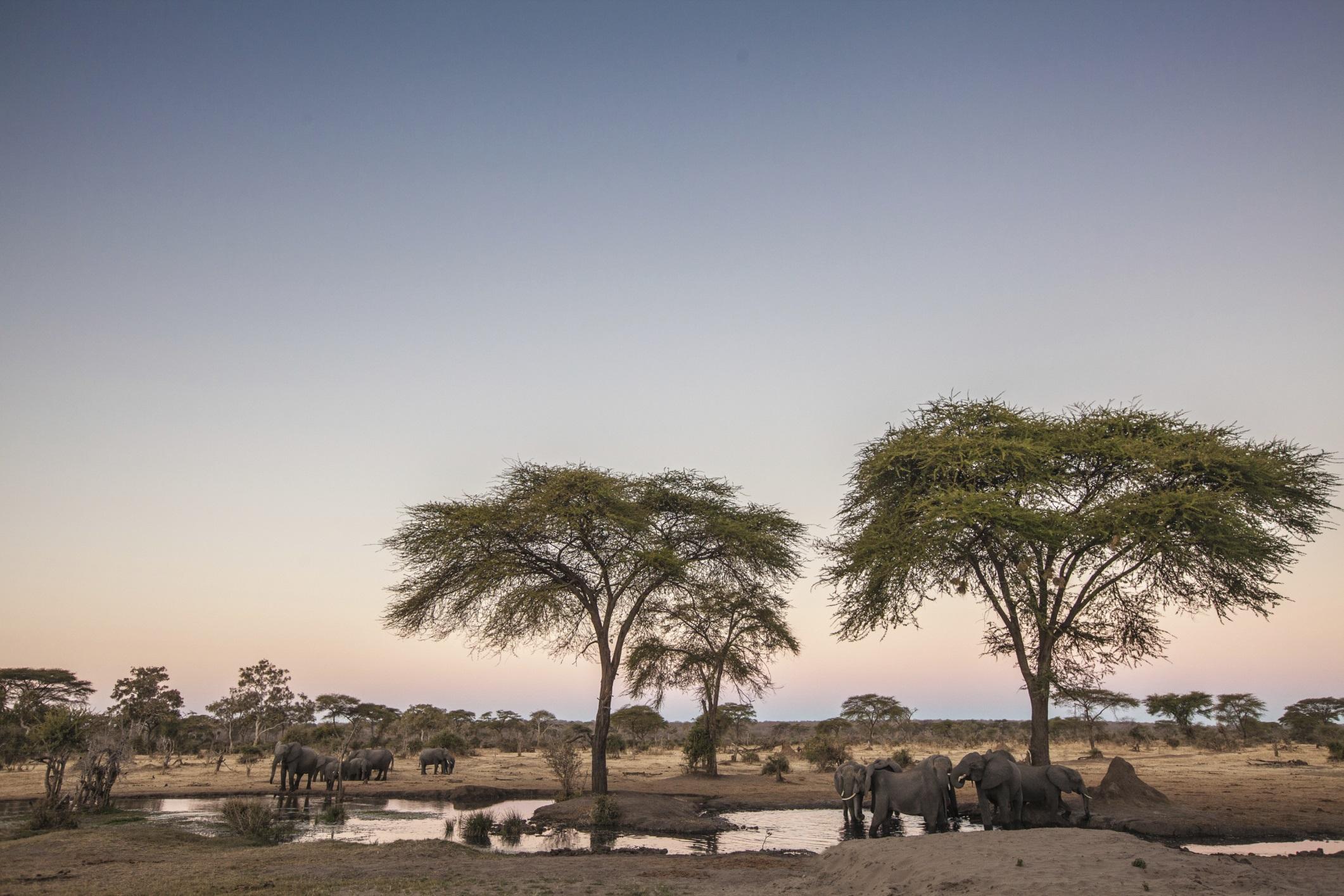 """Massai Mara est un endroit merveilleux..."""