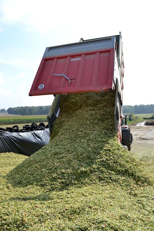 (8) y'a les collègues qui viennent aider à faire la navette entre le champs et la ferme...