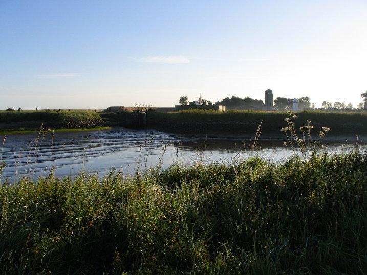 La baie des Veys, où se trouve la ferme.