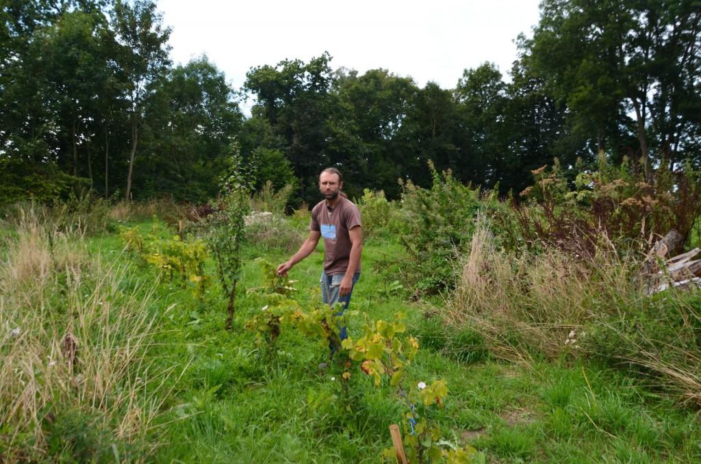 Le futur potager en permaculture ? C'est ici. Et pour le cultiver : Kevin.