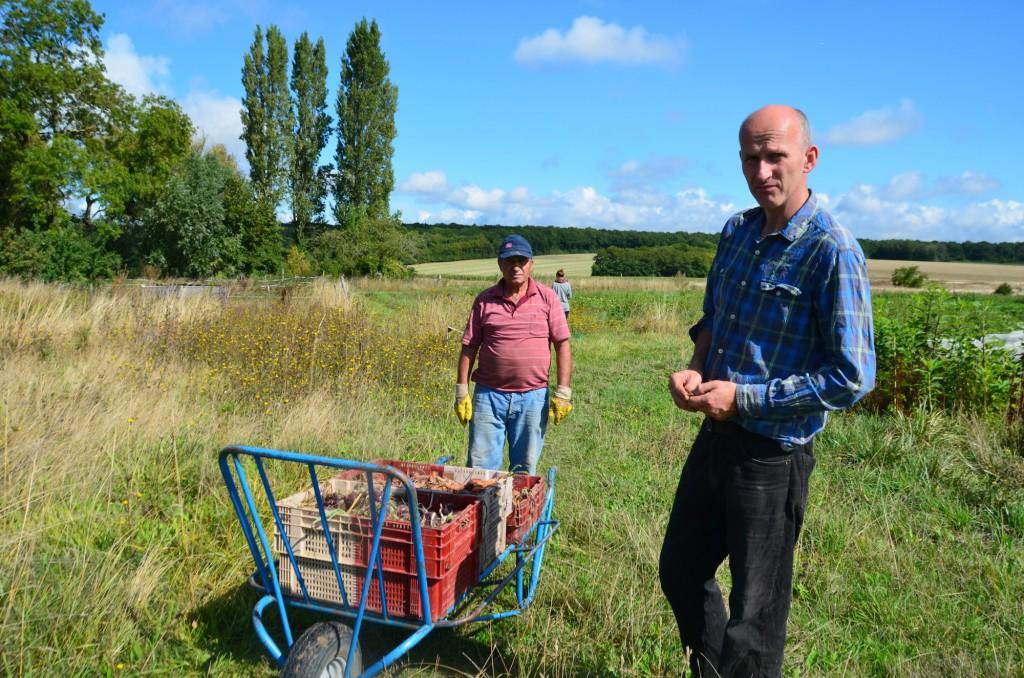 En bleu c'est Nicolas, en rose Ali, fidèle maraîcher d'Heurteloup et puis il y a aussi Frédéric l'assistant boulanger de la ferme.