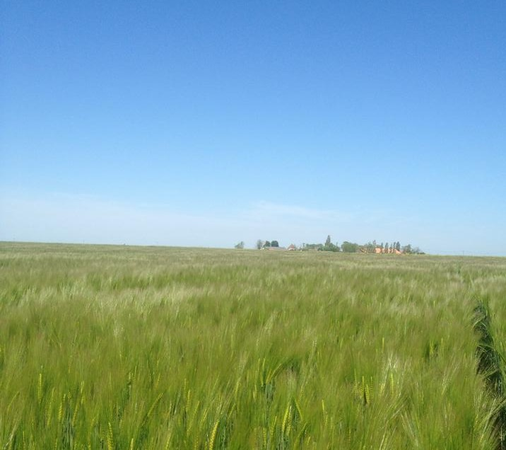 Une petite ferme d'irréductibles, en plein cœur de la Beauce.