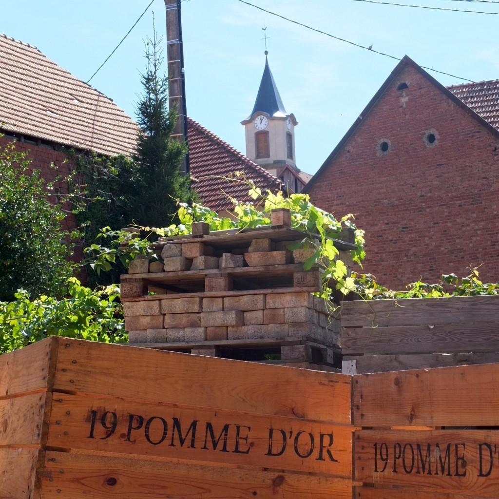 3 Rottelsheim