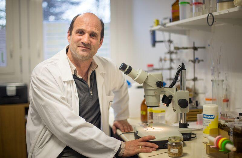 Jean-Marc Bonmatin, chercheur au CNRS. DR