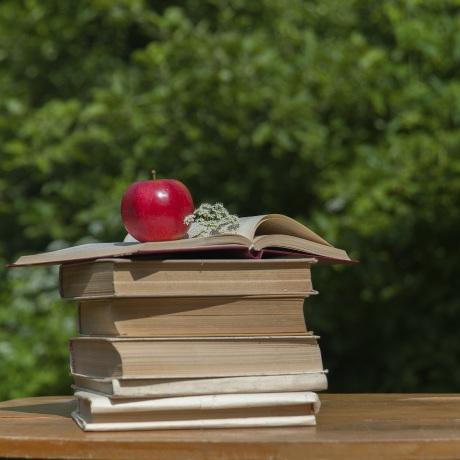 j 39 ai test la monodi te de pommes oui le magazine de la ruche qui dit oui. Black Bedroom Furniture Sets. Home Design Ideas