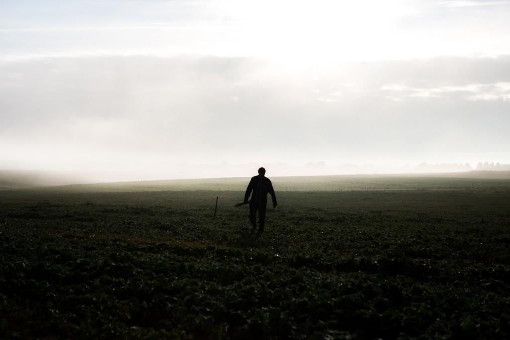 Jacky Berland vient planter un piquet dans son champ de colza afin d'attirer les rapaces (buse, faucon crécerelle, etc.) pour régulariser la population de rongeurs détruisant ses cultures. © Thomas Louapre
