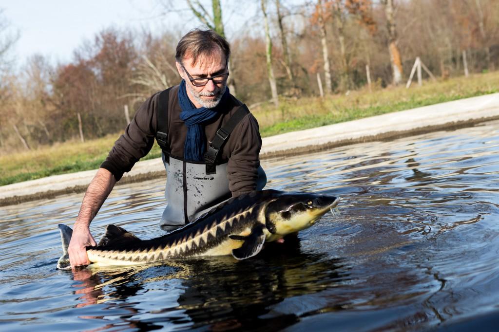 Laurent Deverlanges, passionné de poissons. ©Thomas Louapre