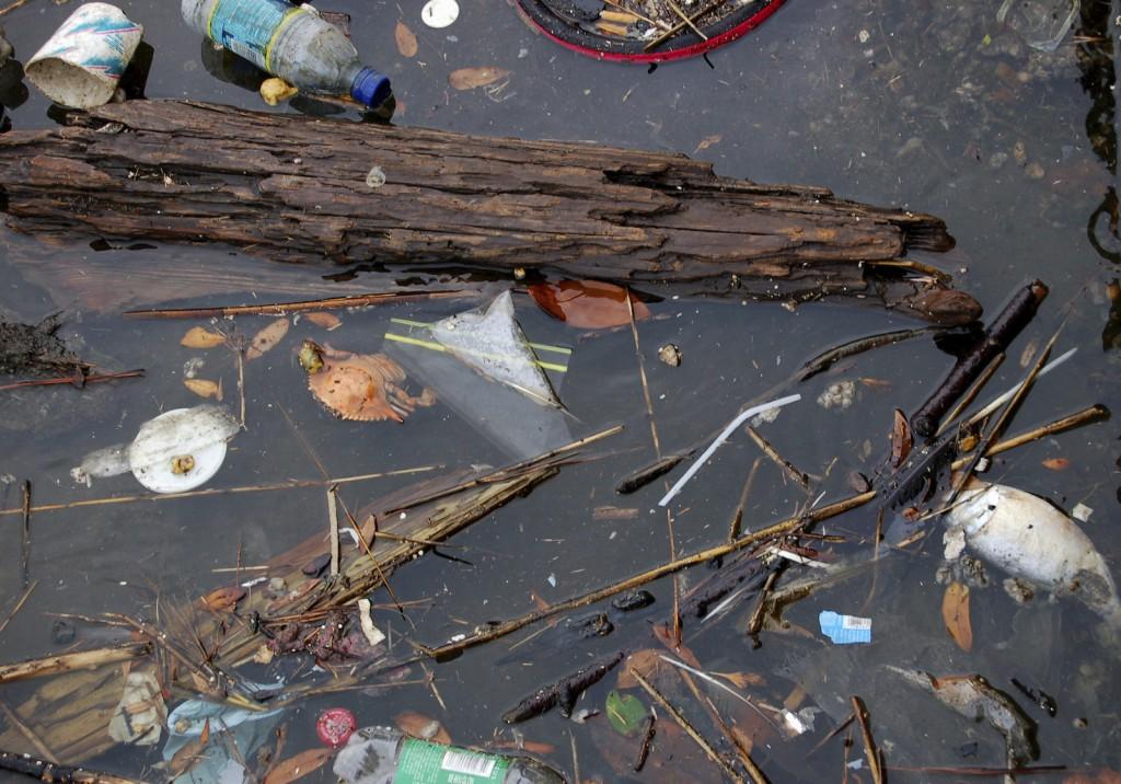 Il reste souvent des traces de polluants dans les eaux bues. Et si on polluait moins nos rivières ?