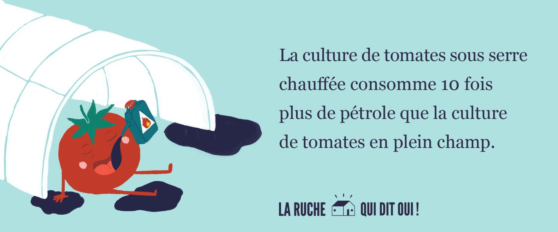 La culture de tomates sous serre chauffée consomme 10 fois plus de pétrole que la culture de tomates en plein champ.