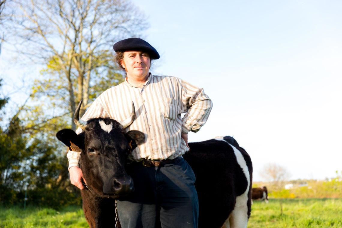 La vache Pie Noir, un destin breton - Oui ! Le magazine de la ...