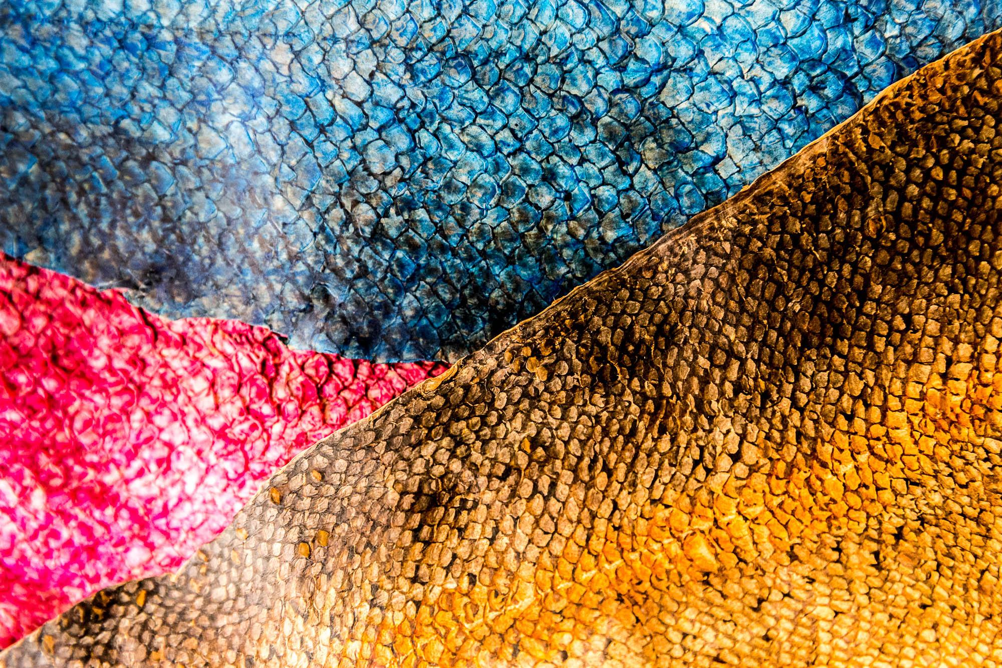 D Ou Vient Le Cuir poissons et bottes de cuir