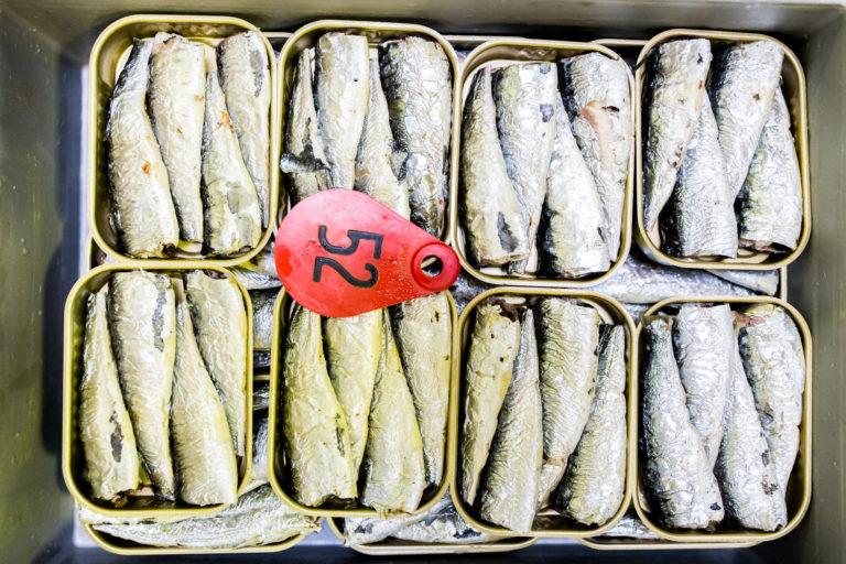 """On dit que les sardines sont """"emboîtées à blanc"""" quand elles exposent leur ventre sur le haut. © Thomas Louapre"""