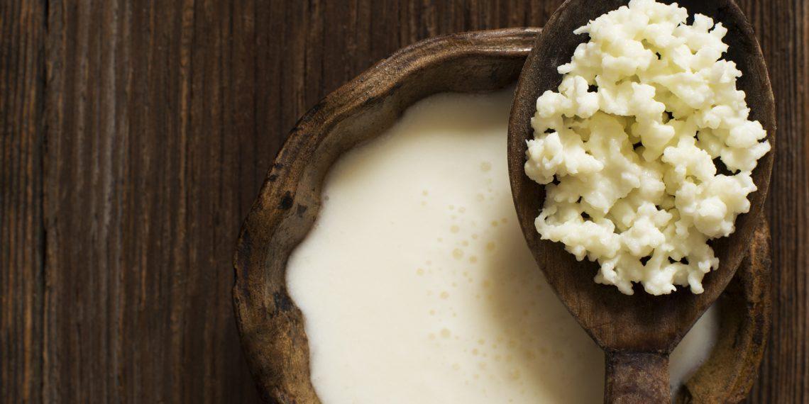 Kéfir de lait - et ses grains de Kéfir.