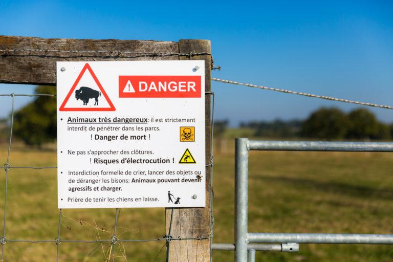Campeurs, randonneurs et autres promeneurs : attention, la campagne française aussi peut s'avérer dangereuse ! © Thomas Louapre