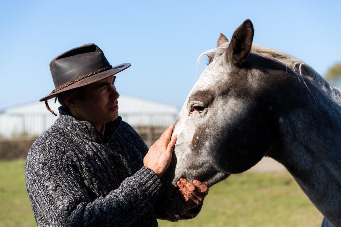Matthieu possède aussi trois chevaux de race Quarter, pour le plaisir. © Thomas Louapre