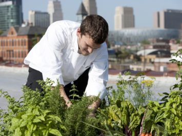 Chef Harvests Homegrown Herbs from Urban Restaurant Rooftop Healthy Eating