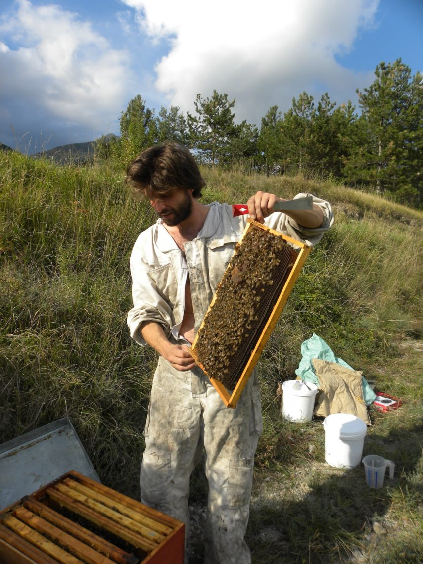 apiculteur 40
