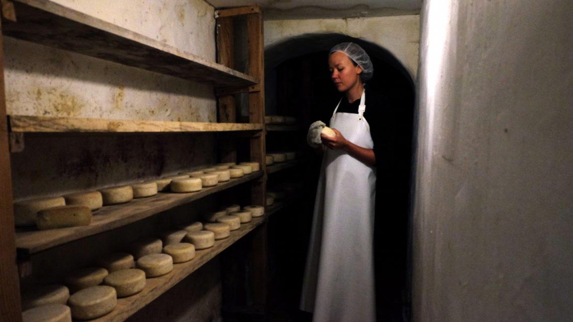 Lavage des fromages