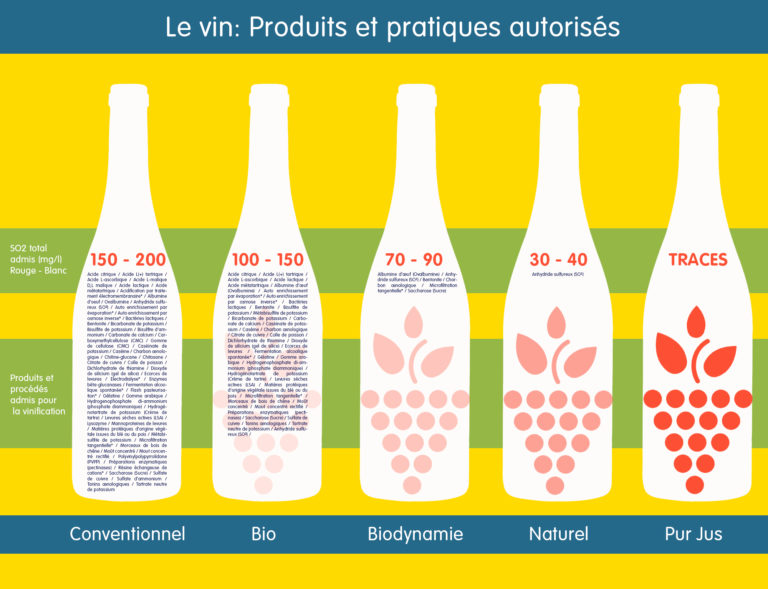 Tableau de différences entre les vins©JustineSaintLo