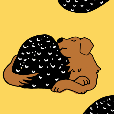 Truffe contre truffes
