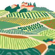 Paysage cultivé